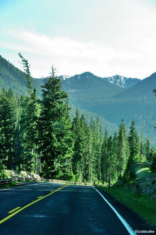 Chinook Pass Scenic Drive