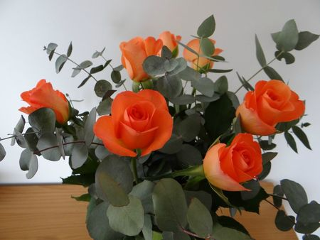 Roses 2 -25
