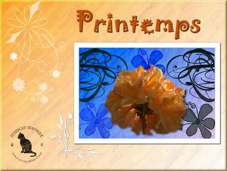 PG_printemps_10042010