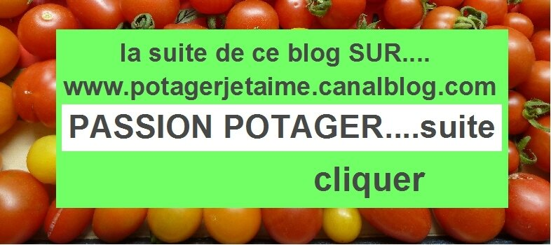 passion potager suite