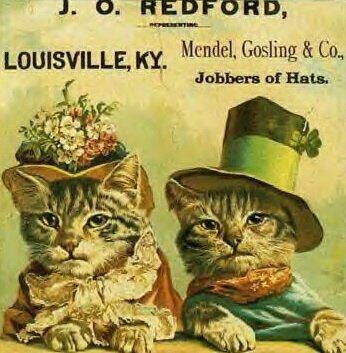 pub ancienne avec chats