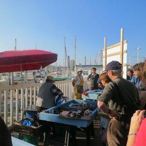 Marché aux poissons Marseille (13) J&W