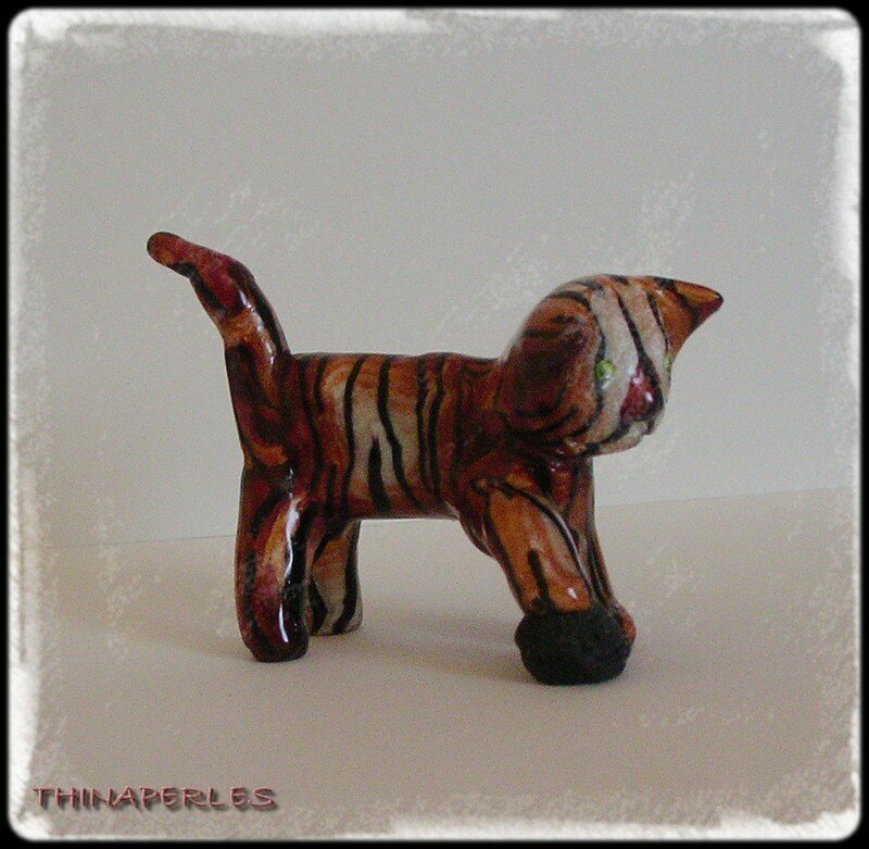 chat peau d'tigre