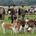 game fair 20 240607 (c)annie leloup 118 1