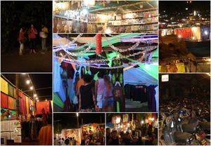 Anjuna_Dauphins__Bangalore_Mysore