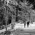 Col du granier en noir et blanc