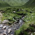 2009 06 24 Le Massif du Sancy et un ruisseau