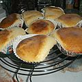 Muffins nature au muffins shaker