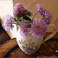 bouquet champêtre scabieuses 4