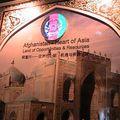 Asie-Moyen Orient, pavillon