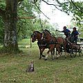 Retour sur la journée de perfectionnement ptv fleury la riviere le 15 juin 2014