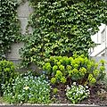 Windows-Live-Writer/Joli-printemps-au-jardin-_601C/20170331_141006_thumb