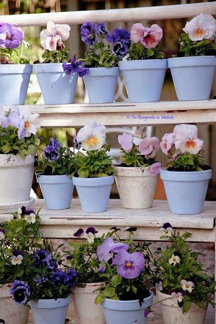 jardin dans la decobelge (365)