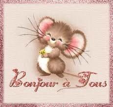 bonjour à tous souris