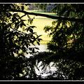 2008-07-20 - WE 16 - Longwood Gardens 027