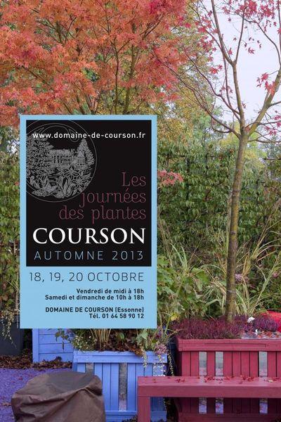 Courson