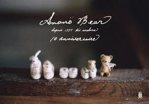bear_dm01