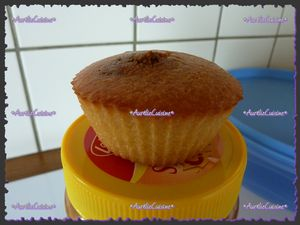 muffins_sp_culoos2