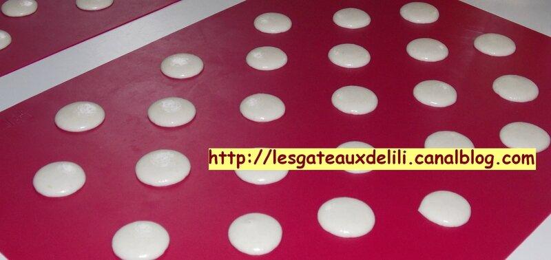 2014 01 26 - macarons (14)