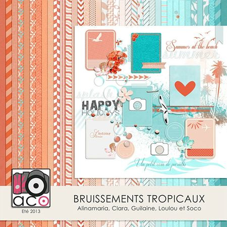 ACO_Bruissements tropicaux_preview