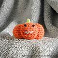 The serial crocheteuse n°140 amigurumi mania