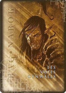 Les Voies Cynwalls 01