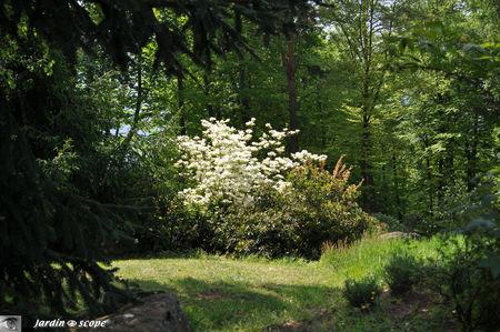 Jardins_de_callunes_0108