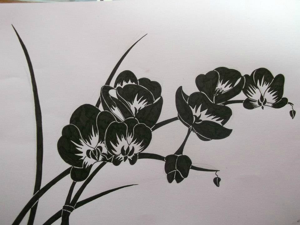 Orchid es of the dead liud chicaud - Dessin d orchidee ...