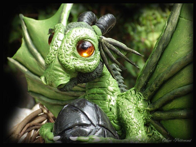 Dragonnet 4