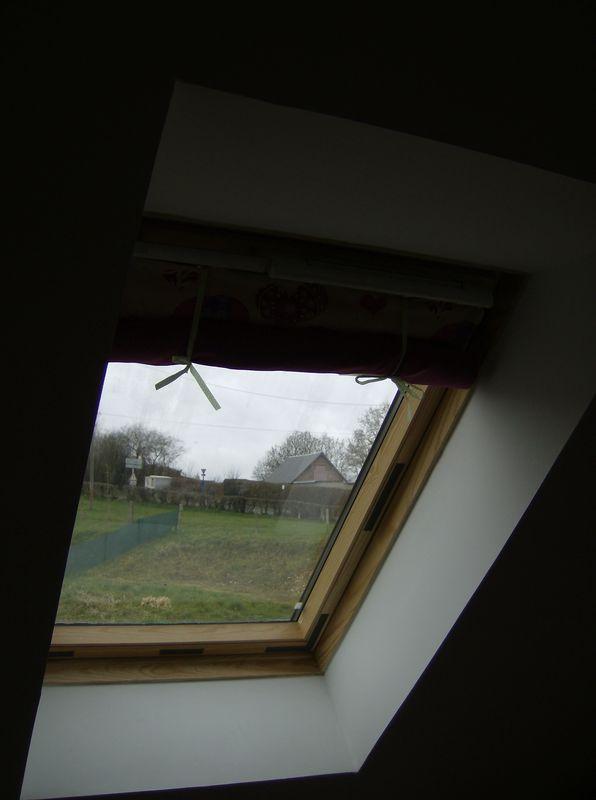 Les rideaux de la nouvelle maison - à hauteur de fourmi