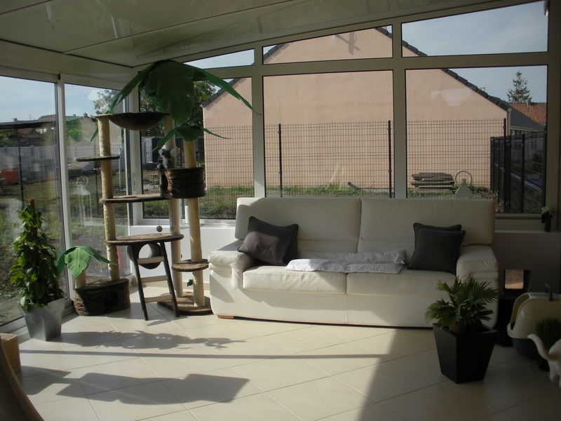 d co v randa notre blog l 39 avancement de notre maison castor evin malmaison dans le nord. Black Bedroom Furniture Sets. Home Design Ideas