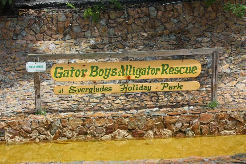 J24 - 21 juillet 2014 Everglades (171).JPG
