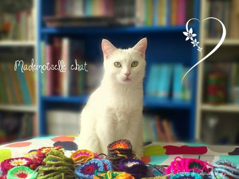 Mademoiselle chat me surveille - crochet