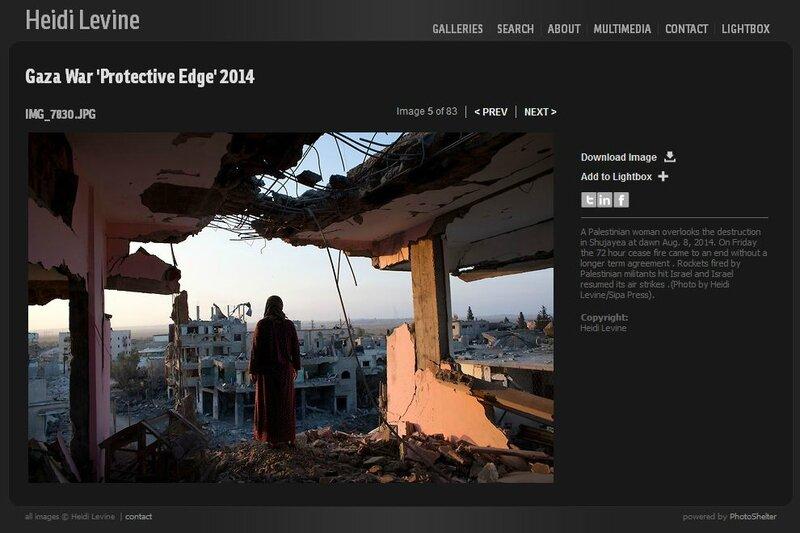 levine-gaza-2014