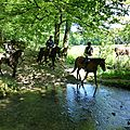 balade equestre gastronomique à La Lucerne d'Outremer (71)