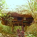 tribal hut