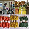 De la laine islandaise teinte à la main