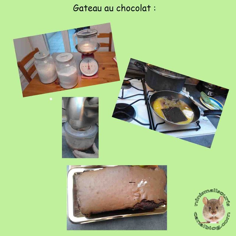 gateau_achocolat_copie