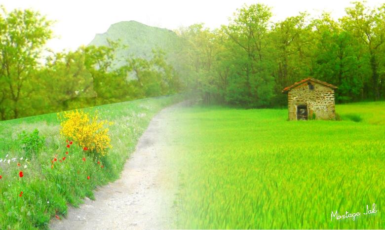 la petite maison dans la prairie 11 5 2017 montjoint 2 png