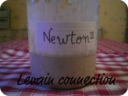 levain connection