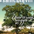 saint brevin mag' - couverture