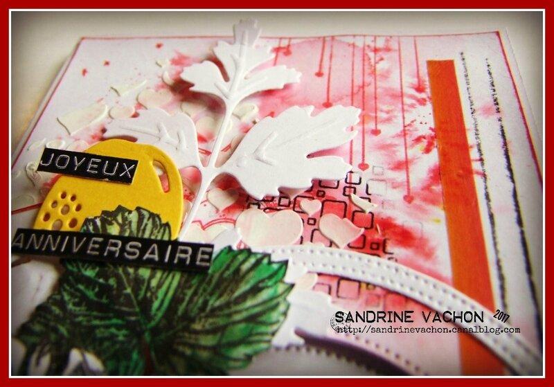 Sandrine VACHON DT PCC (5)