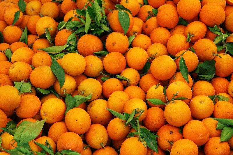 photo-orange4