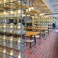 Barbican foodhall and lounge londres grande bretagne