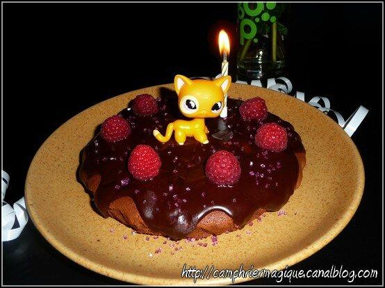 gâteau choco-framboise gagaie anniv