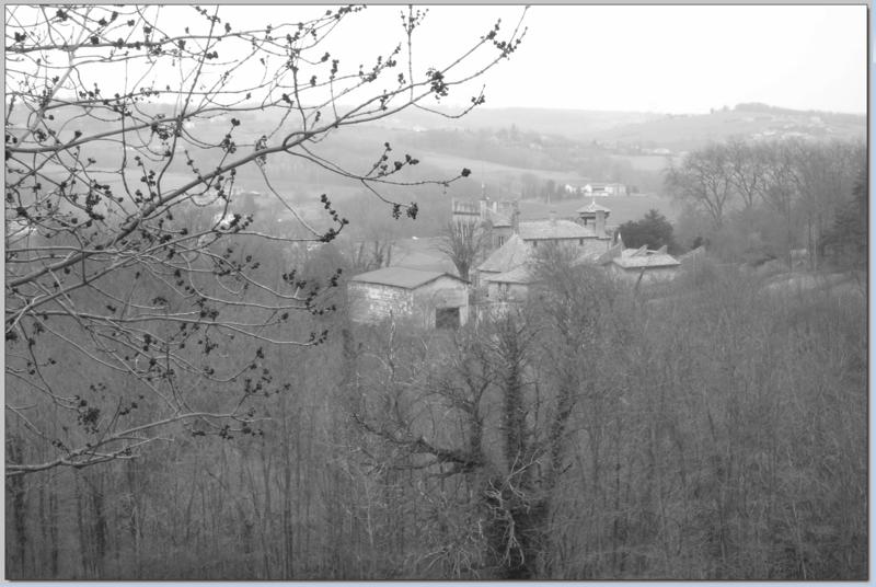 LE CHATEAU DU RICHOUD - ASSIEU (ISERE) - SUITE 3