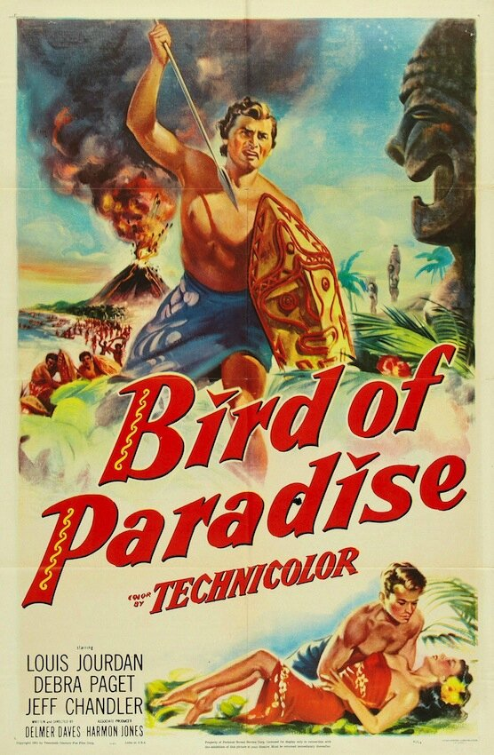 l 39 oiseau de paradis bird of paradise delmer daves 1951 films noirs. Black Bedroom Furniture Sets. Home Design Ideas