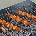 Brochettes de poulet mariné abricotée