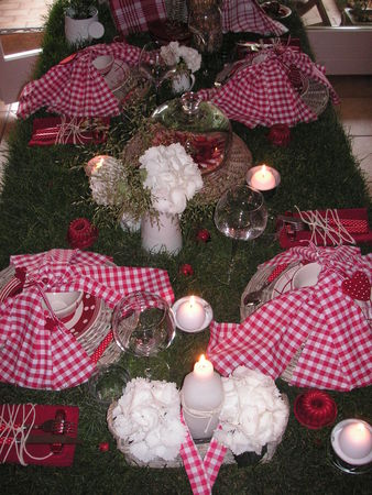 table_picnic_025