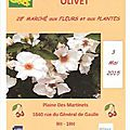 Marché aux plantes à olivet